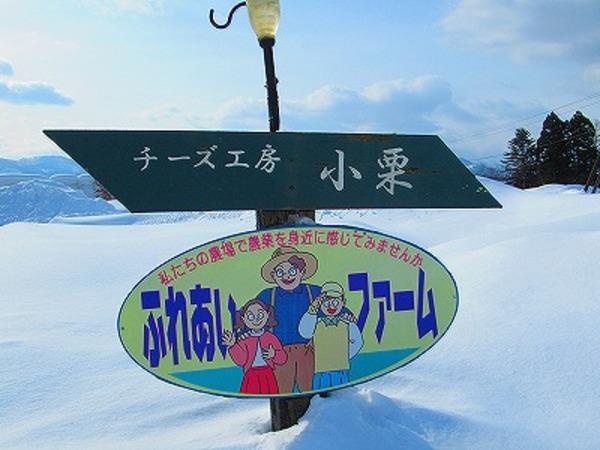 北海道/チーズ工房 小栗 様